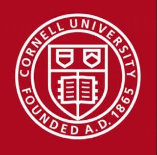 Cornell University Logo ICIE